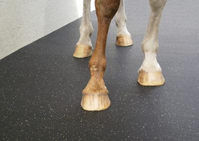 Regupol-Horseline-Equestrian-Flooring